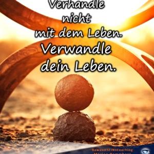 Verhandle nicht mit dem Leben. Verwandle dein Leben - BewusstSEINs Wege der Glücklichkeit, Marion Dammberg, BewusstSEINs Life Coach