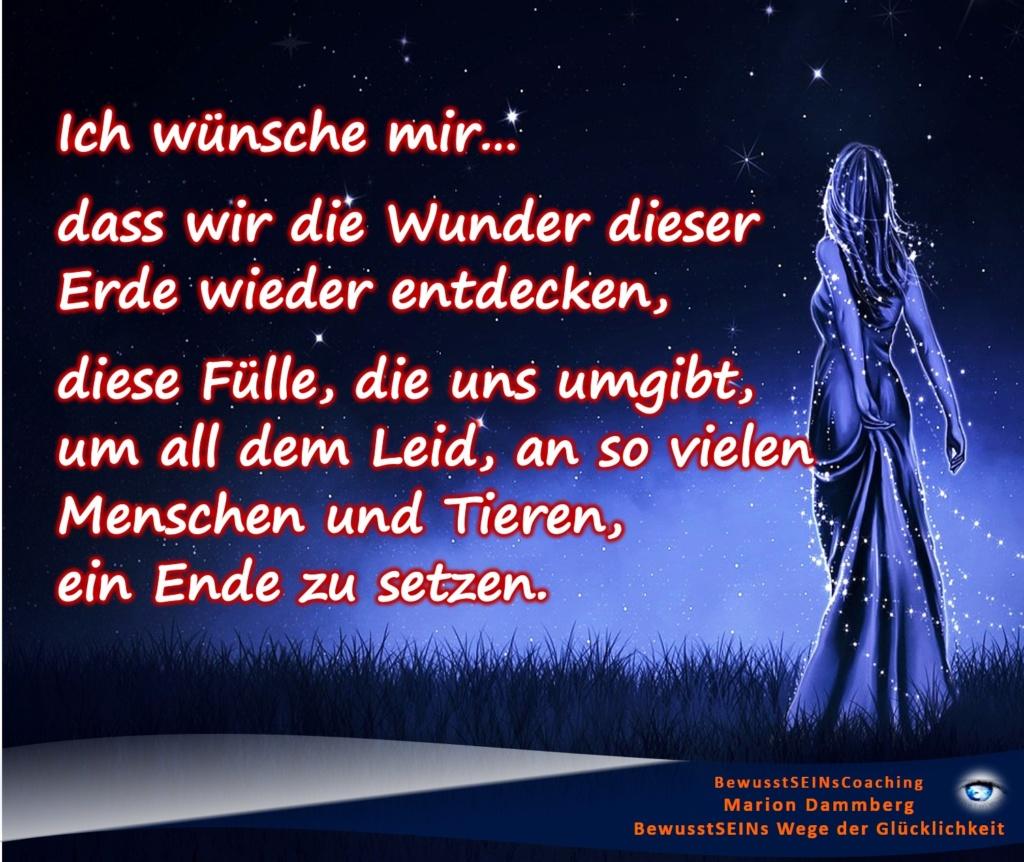 Mein Wunschzettel zu Weihnachten, dass wir die Wunder dieser Erde wieder entdecken, diese Fülle, die uns umgibt, um all dem Leid, an so vielen Menschen und Tieren, ein Ende zu setzen. - BewusstSEINs Wege der Glücklichkeit, Marion Dammberg, BewusstSEINs-Coaching