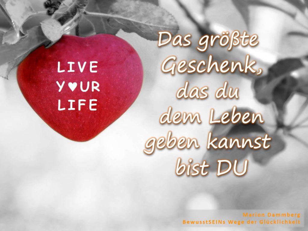 Das größte Geschenk, das du dem Leben geben kannst bist DU. - BewusstSEINS Wege der Glücklichkeit, Marion Dammberg, BewusstSEINS Life Coach