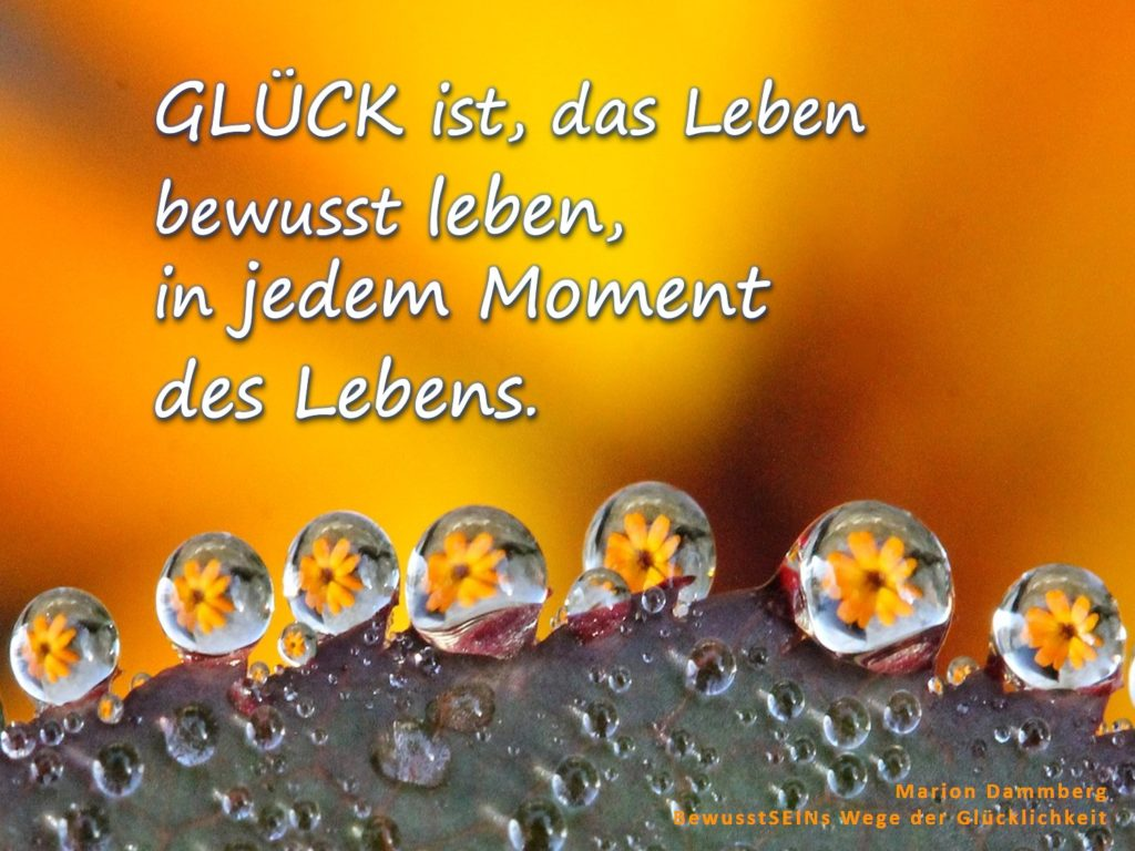 Glück ist das Leben bewusst leben - BewusstSEINS Wege der Glücklichkeit, Marion Dammberg, BewusstSEINS Life Coach