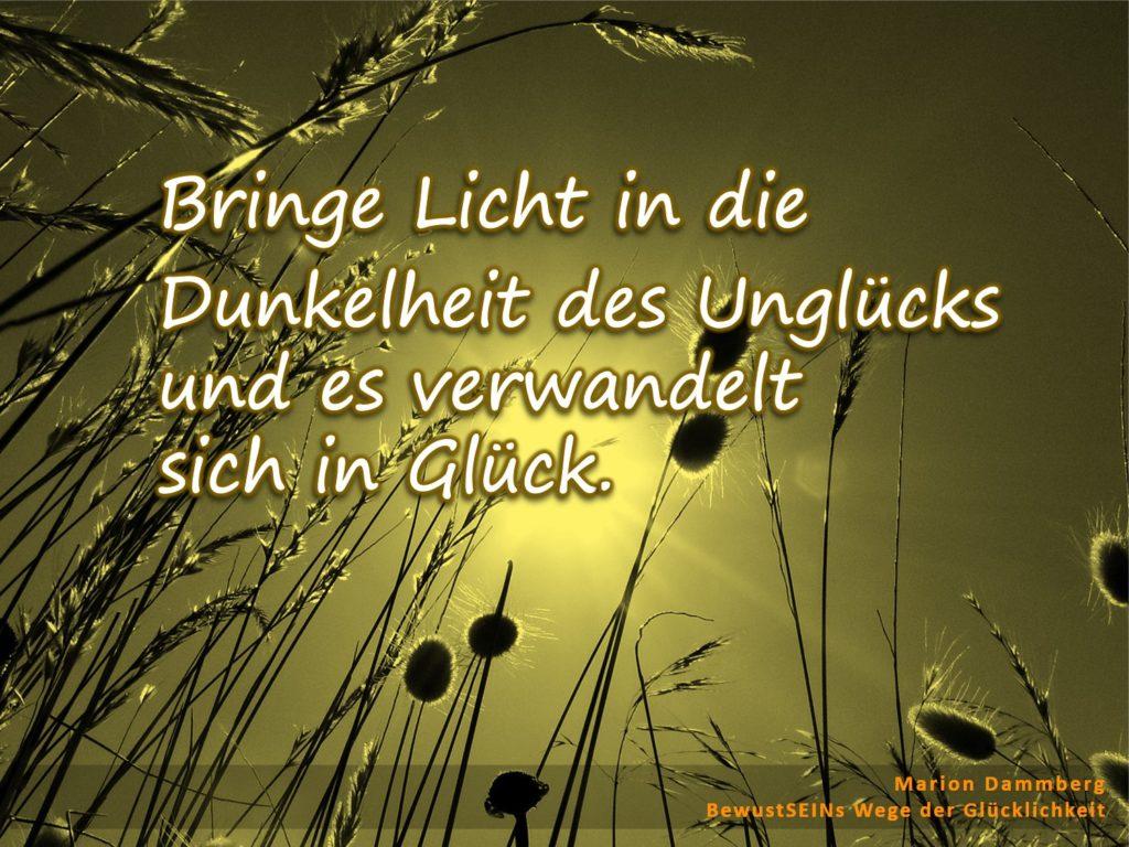 Bringe Licht in die Dunkelheit des Unglücks und es verwandelt sich in Glück. - BewusstSEINS Wege der Glücklichkeit, Marion Dammberg, BewusstSEINS Life Coach
