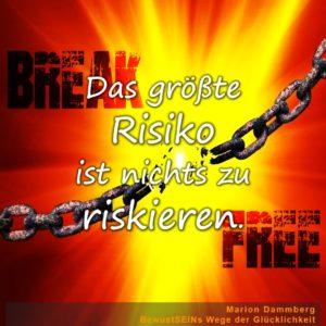 Das größte Risiko ist nichts zu riskieren. - BewusstSEINs Wege der Glücklichkeit, Marion Dammberg, BewusstSEINs Life Coach