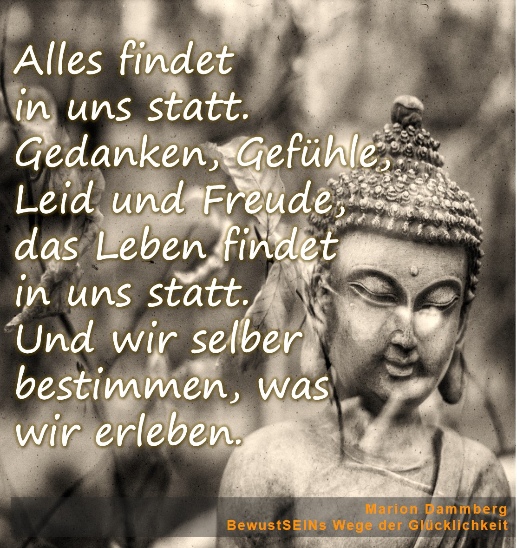 BewusstSEINs Wege der Glücklichkeit, Marion Dammberg, BewusstSEINs Life Coach - Alles findet in uns statt. Gedanken, Gefühle, Leid und Freude, das Leben findet in uns statt. Und wir selber bestimmen, was wir erleben.