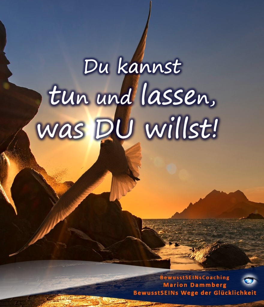 Du kannst tun und lassen, was DU willst! - BewusstSEINs Wege der Glücklichkeit, Marion Dammberg, BewusstSEINsCoaching Life Coach