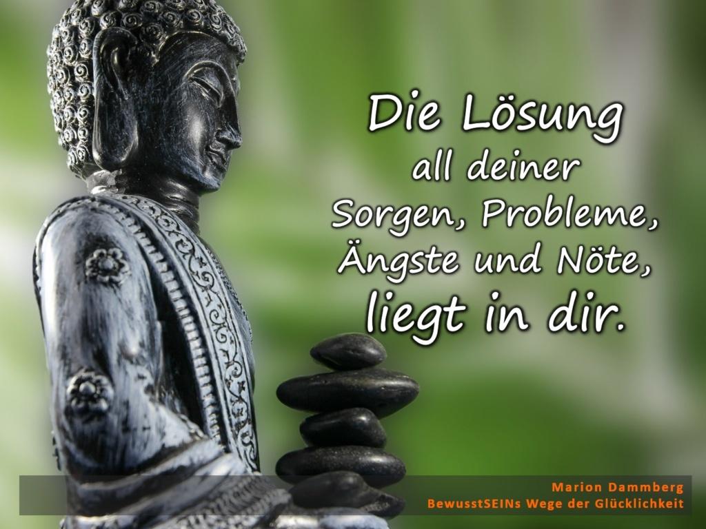 Die Lösung all deiner Sorgen, Probleme, Ängste und Nöte, liegt in dir. - BewusstSEINs Wege der Glücklichkeit, Marion Dammberg, BewusstSEINs Life Coach