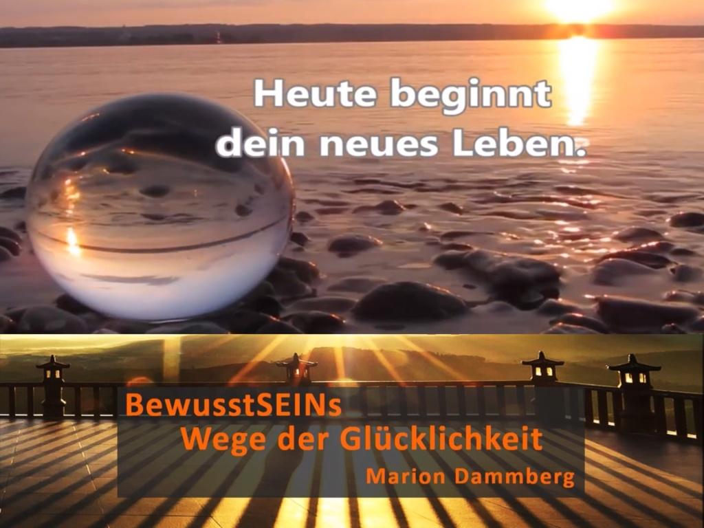 Heute beginnt dein neues Leben - BewusstSEINs Wege der Glücklichkeit, Marion Dammberg, BewusstSEINs Life Coach