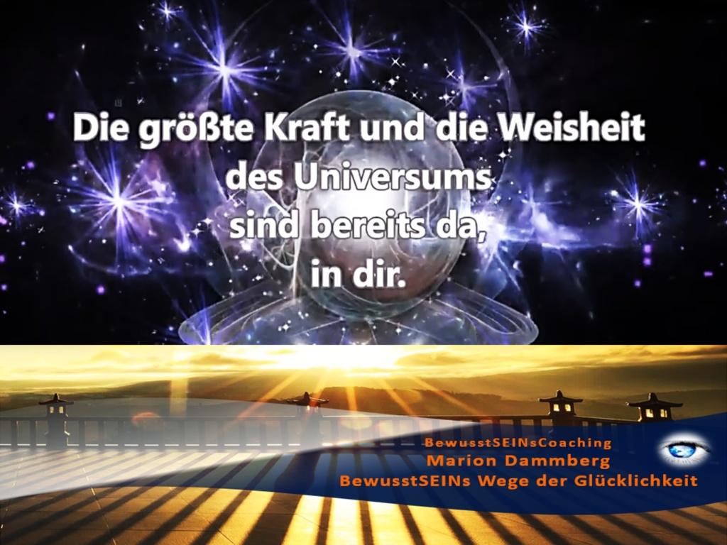 Die größte Kraft und Weisheit des Universums - BewusstSEINs Wege der Glücklichkeit, Marion Dammberg, BewusstSEINsCoaching Life Coach