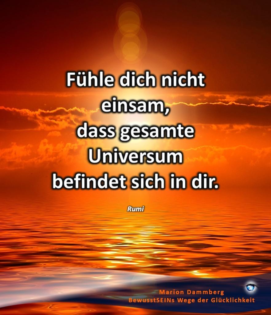Fühle dich nicht einsam, dass gesamte Universum befindet sich in dir. Zitat Rumi - BewusstSEINs Wege der Glücklichkeit, Marion Dammberg, BewusstSEINs Life Coach