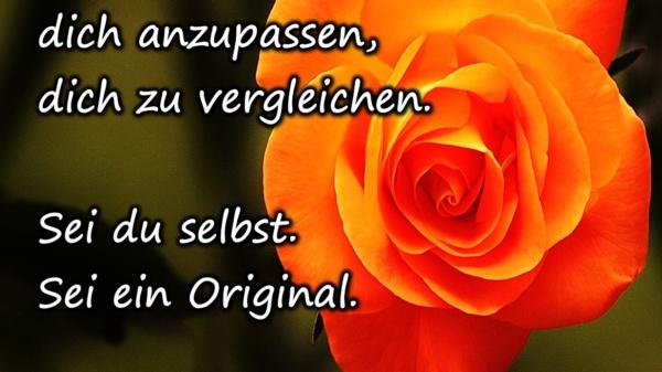 Höre auf, dich anzupassen, dich zu vergleichen. Sei du selbst. Sei ein Original. Lebe und liebe dich als Original. - BewusstSEINs Wege der Glücklichkeit, Marion Dammberg, BewusstSEINs Life Coach