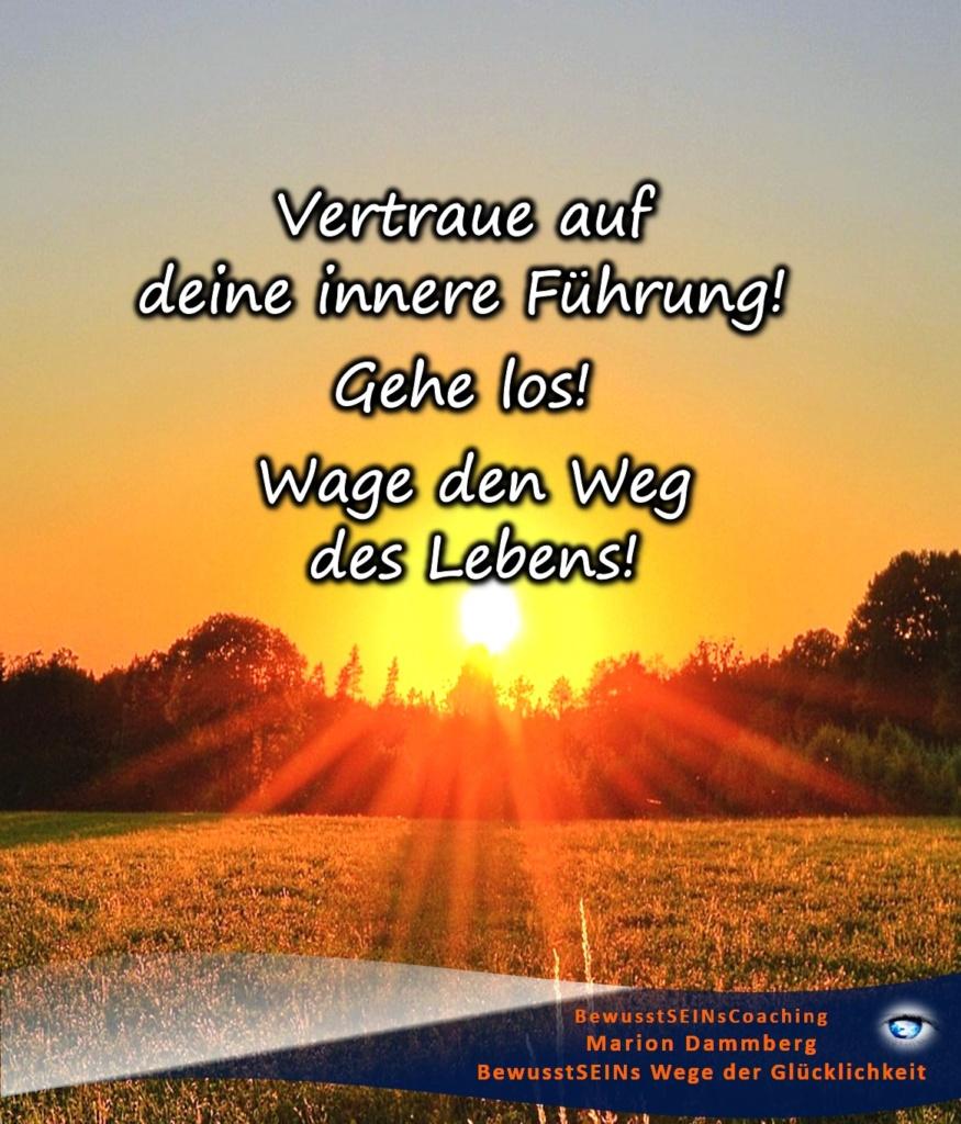 Vertraue auf deine innere Führung! Gehe los! Wage den Weg des Lebens! - BewusstSEINs Wege der Glücklichkeit, Marion Dammberg, BewusstSEINs Life Coach