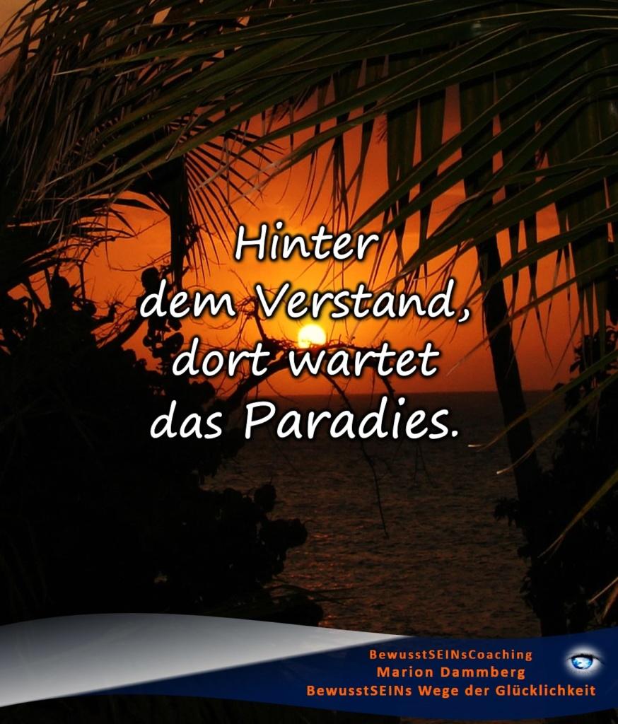 Hinter dem Verstand dort wartet das Paradies - BewusstSEINs Wege der Glücklichkeit, Marion Dammberg, BewusstSEINs Life Coach
